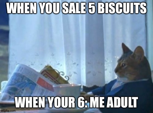 I Should Buy A Boat Cat Meme |  WHEN YOU SALE 5 BISCUITS; WHEN YOUR 6: ME ADULT | image tagged in memes,i should buy a boat cat | made w/ Imgflip meme maker