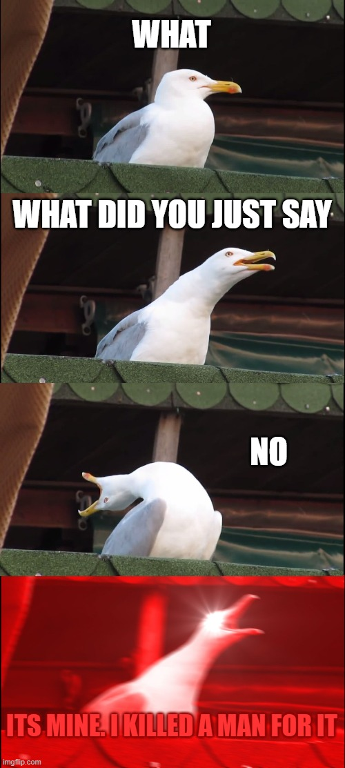 WHAT WHAT DID YOU JUST SAY NO ITS MINE. I KILLED A MAN FOR IT | image tagged in memes,inhaling seagull | made w/ Imgflip meme maker