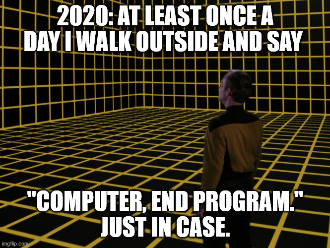 "Just in case |  2020: AT LEAST ONCE A DAY I WALK OUTSIDE AND SAY; ""COMPUTER, END PROGRAM.""   JUST IN CASE. 