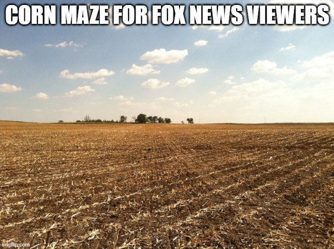 Corn Maze for Fox New Viewers |  CORN MAZE FOR FOX NEWS VIEWERS | image tagged in corn maze,fox news | made w/ Imgflip meme maker