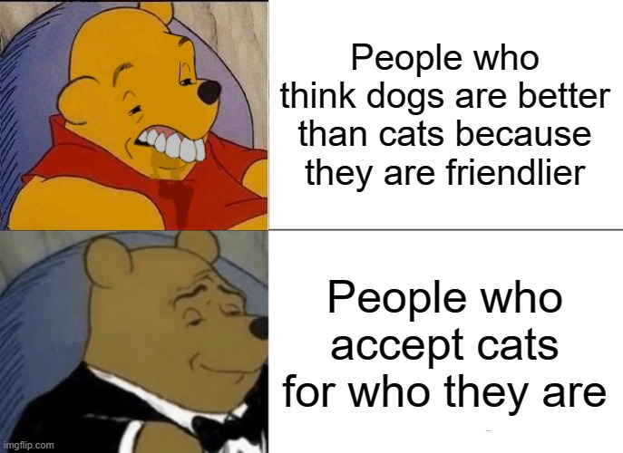 Tuxedo Winnie The Pooh |  People who think dogs are better than cats because they are friendlier; People who accept cats for who they are | image tagged in memes,tuxedo winnie the pooh,cats are better than dogs | made w/ Imgflip meme maker