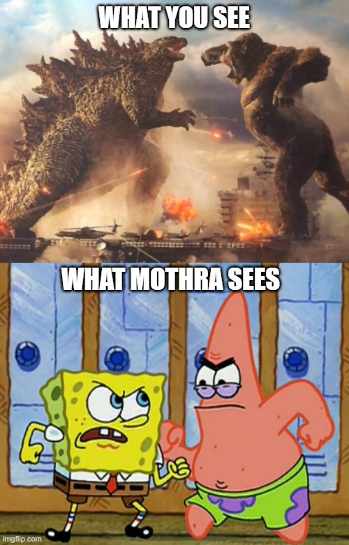 What if Mothra saw Godzilla and Kong fighting? |  WHAT YOU SEE; WHAT MOTHRA SEES | image tagged in godzilla vs kong,mothra,godzilla,king kong,spongebob squarepants,patrick star | made w/ Imgflip meme maker