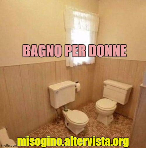 women toilet |  BAGNO PER DONNE; misogino.altervista.org | image tagged in women,toilet humor,italian | made w/ Imgflip meme maker