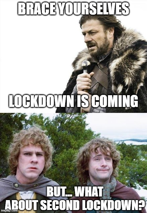 Second Lockdown is coming |  BRACE YOURSELVES; LOCKDOWN IS COMING; BUT... WHAT ABOUT SECOND LOCKDOWN? | image tagged in memes,brace yourselves x is coming,second breakfast,lotrr,boromir,hobbit | made w/ Imgflip meme maker