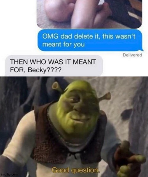 image tagged in shrek good question | made w/ Imgflip meme maker