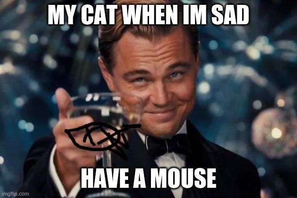 Leonardo Dicaprio Cheers |  MY CAT WHEN IM SAD; HAVE A MOUSE | image tagged in memes,leonardo dicaprio cheers | made w/ Imgflip meme maker