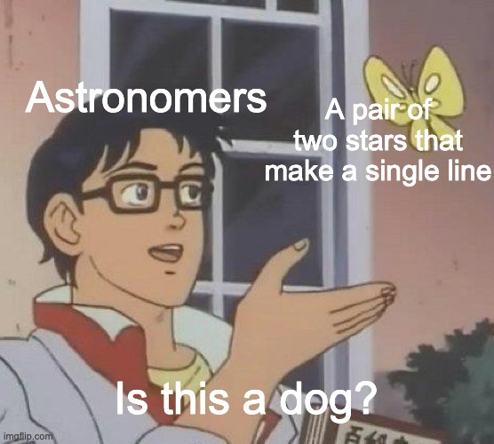 Constellations |  Astronomers; A pair of two stars that make a single line; Is this a dog? | image tagged in memes,is this a pigeon | made w/ Imgflip meme maker
