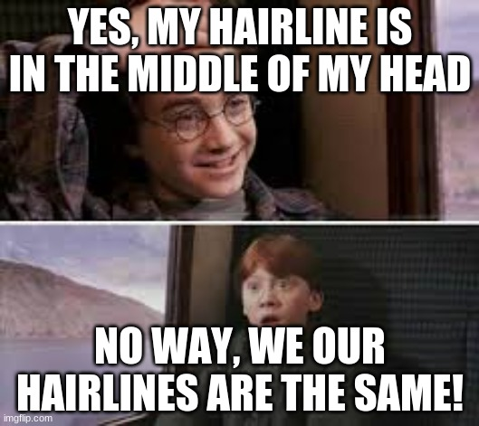 Similar hairlines |  YES, MY HAIRLINE IS IN THE MIDDLE OF MY HEAD; NO WAY, WE OUR HAIRLINES ARE THE SAME! | image tagged in harry potter,memes,hairline | made w/ Imgflip meme maker