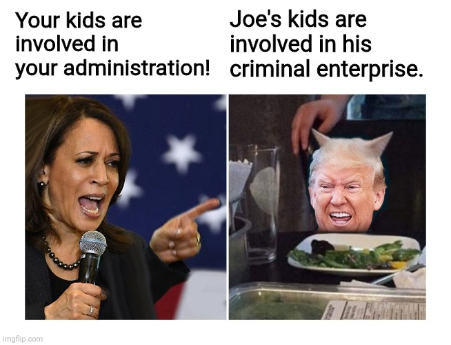 kids today |  Joe's kids are involved in his criminal enterprise. Your kids are involved in your administration! | image tagged in yelling harris vs trump cat,biden,trump | made w/ Imgflip meme maker