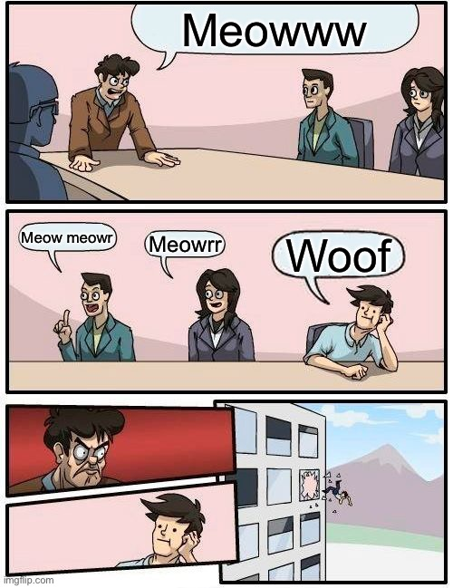 Idk if this made before |  Meowww; Meow meowr; Meowrr; Woof | image tagged in memes,boardroom meeting suggestion,cats | made w/ Imgflip meme maker