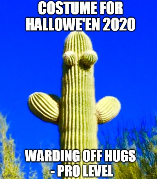 Hallowe'en in 2020 |  COSTUME FOR HALLOWE'EN 2020; WARDING OFF HUGS  - PRO LEVEL | image tagged in 2020,halloween,costume,cactus,hug,memes | made w/ Imgflip meme maker