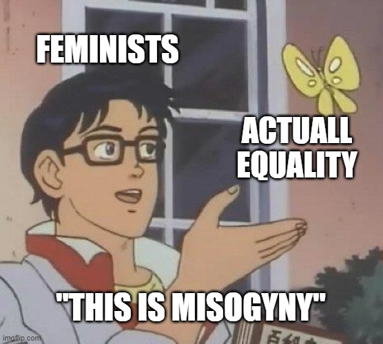 "Is This A Pigeon |  FEMINISTS; ACTUALL EQUALITY; ""THIS IS MISOGYNY"" 
