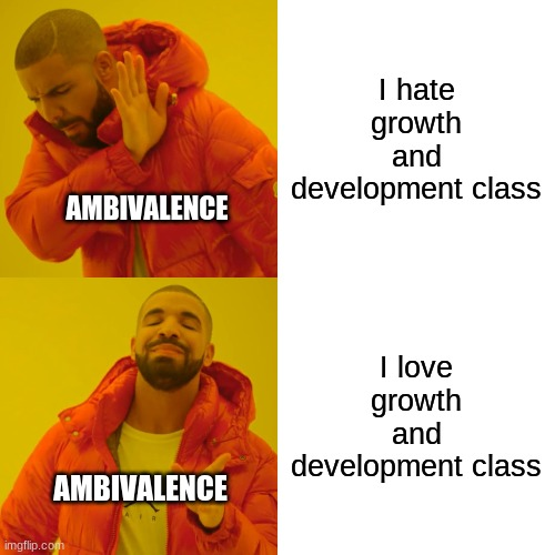G+D Meme 3 |  I hate growth and development class; AMBIVALENCE; I love growth and development class; AMBIVALENCE | image tagged in memes,drake hotline bling,development,psychology,school,ambivalence | made w/ Imgflip meme maker