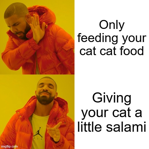 Drake Hotline Bling |  Only feeding your cat cat food; Giving your cat a little salami | image tagged in memes,drake hotline bling,cats,salami | made w/ Imgflip meme maker