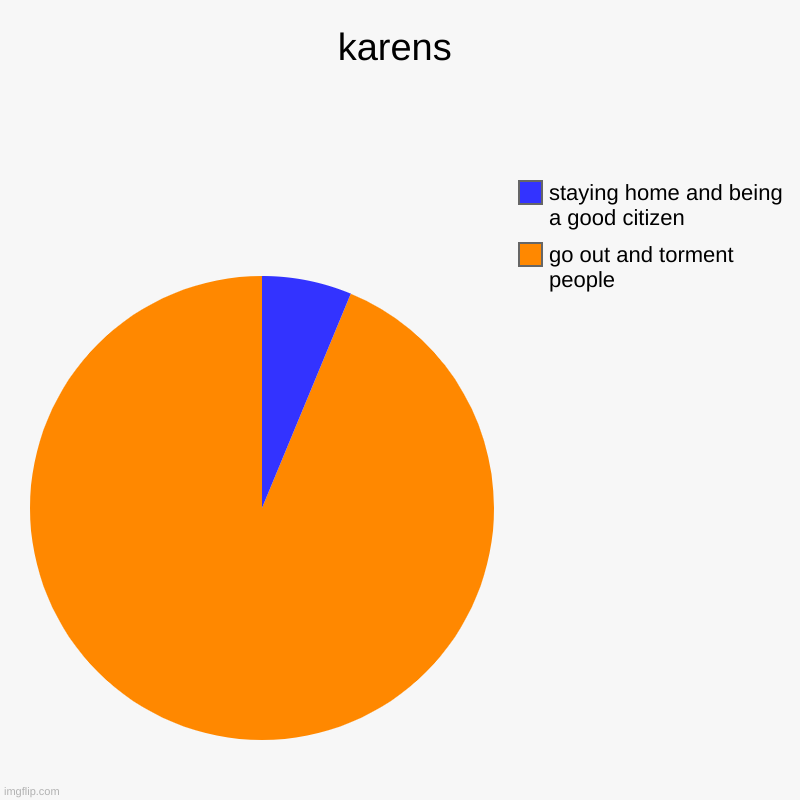 karens | go out and torment people, staying home and being a good citizen | image tagged in charts,pie charts | made w/ Imgflip chart maker