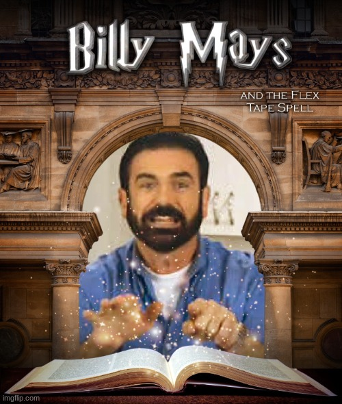 Sounds like a great fanfiction | image tagged in billy mays,harry potter | made w/ Imgflip meme maker