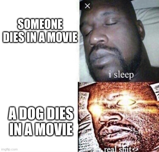 *snifle |  SOMEONE DIES IN A MOVIE; A DOG DIES IN A MOVIE | image tagged in i sleep real shit | made w/ Imgflip meme maker