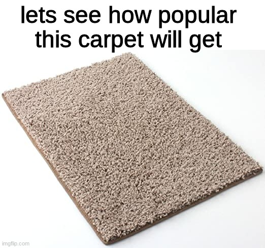 Carpet. |  lets see how popular this carpet will get | image tagged in memes,funny,carpet,random,carpet is cool | made w/ Imgflip meme maker
