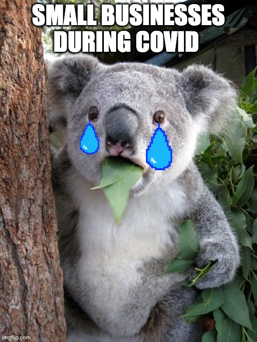 Surprised Koala |  SMALL BUSINESSES DURING COVID | image tagged in memes,surprised koala | made w/ Imgflip meme maker
