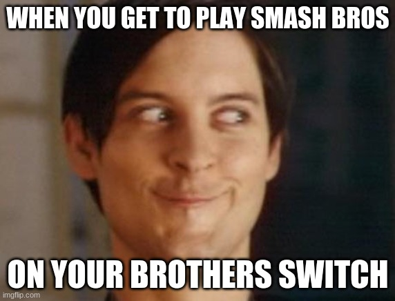 Spiderman Peter Parker |  WHEN YOU GET TO PLAY SMASH BROS; ON YOUR BROTHERS SWITCH | image tagged in memes,spiderman peter parker | made w/ Imgflip meme maker
