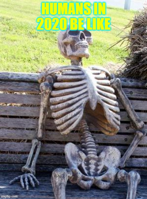 Waiting Skeleton |  HUMANS IN 2020 BE LIKE | image tagged in memes,waiting skeleton | made w/ Imgflip meme maker