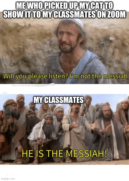 HE IS THE MESSIAH |  ME WHO PICKED UP MY CAT TO SHOW IT TO MY CLASSMATES ON ZOOM; MY CLASSMATES | image tagged in he is the messiah,cats,funny,zoom,memes | made w/ Imgflip meme maker