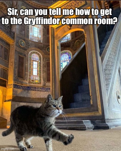 The Inside of This Mosque Reminded Me of Hogwarts |  Sir, can you tell me how to get  to the Gryffindor common room? | image tagged in funny memes,funny cats,funny,cats,harry potter | made w/ Imgflip meme maker