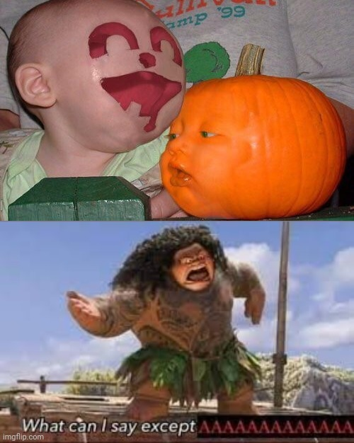 The baby and the pumpkin face swap | image tagged in what can i say except aaaaaaaaaaa,baby,pumpkin,face swap,funny,memes | made w/ Imgflip meme maker