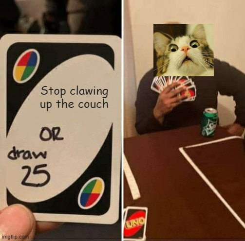 UNO Draw 25 Cards |  Stop clawing up the couch | image tagged in memes,uno draw 25 cards | made w/ Imgflip meme maker
