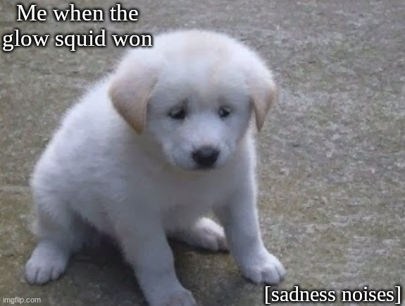 Glow squid |  Me when the glow squid won; [sadness noises] | image tagged in sad sad doggo ' | made w/ Imgflip meme maker