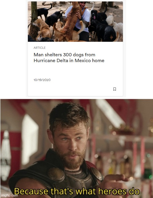 That's what heroes do | image tagged in that s what heroes do,dogs,marvel,thor,doggo,doggos | made w/ Imgflip meme maker