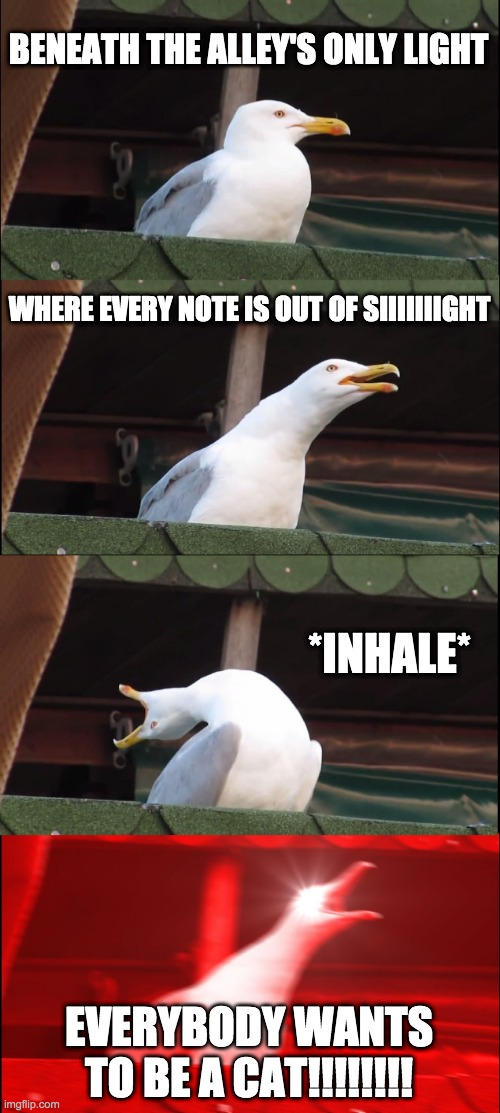 Inhaling Seagull |  BENEATH THE ALLEY'S ONLY LIGHT; WHERE EVERY NOTE IS OUT OF SIIIIIIIGHT; *INHALE*; EVERYBODY WANTS TO BE A CAT!!!!!!!! | image tagged in memes,inhaling seagull,the aristocats,everybody wants to be a cat,songs,disney | made w/ Imgflip meme maker