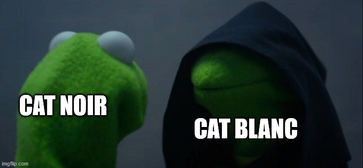 Cat Noir and Cat Blanc |  CAT NOIR; CAT BLANC | image tagged in memes,evil kermit | made w/ Imgflip meme maker