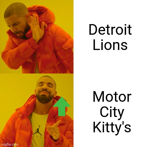 Detroit Nicknames |  Detroit Lions; Motor City Kitty's | image tagged in memes,drake hotline bling | made w/ Imgflip meme maker