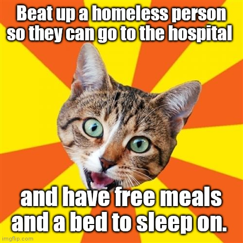 Spread the wralth. |  Beat up a homeless person so they can go to the hospital; and have free meals and a bed to sleep on. | image tagged in memes,bad advice cat,kindoffunny | made w/ Imgflip meme maker
