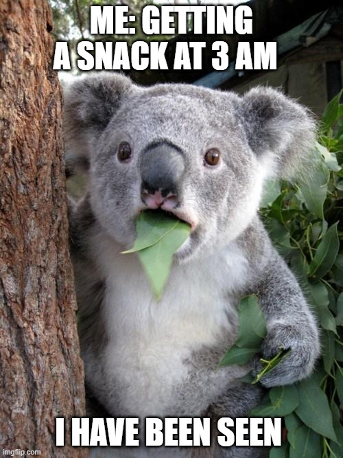 nom nom time |  ME: GETTING A SNACK AT 3 AM; I HAVE BEEN SEEN | image tagged in memes,surprised koala | made w/ Imgflip meme maker