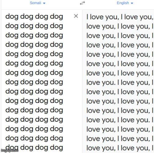 i guess google translate loves dogs | image tagged in dogs,google translate | made w/ Imgflip meme maker
