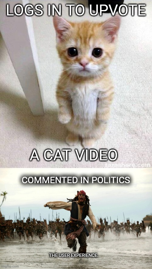 gotta run |  LOGS IN TO UPVOTE; A CAT VIDEO; COMMENTED IN POLITICS; THE USER EXPERIENCE. | image tagged in memes,cute cat,captain jack sparrow running | made w/ Imgflip meme maker