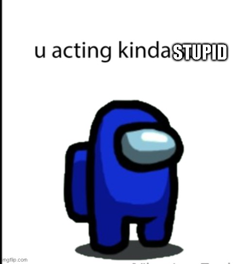 Just enjoy the meme. |  STUPID | image tagged in ur acting kinda sus | made w/ Imgflip meme maker