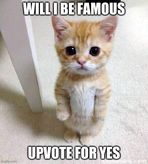 Cute Cat |  WILL I BE FAMOUS; UPVOTE FOR YES | image tagged in memes,cute cat | made w/ Imgflip meme maker