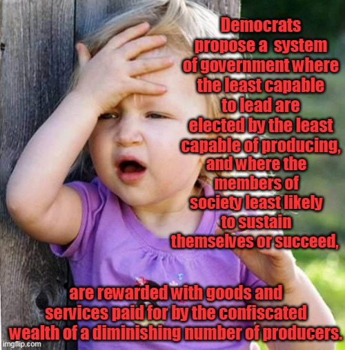 Not mine, I read this on the internet. Wow. |  Democrats propose a  system of government where the least capable to lead are elected by the least capable of producing, and where the members of society least likely to sustain themselves or succeed, are rewarded with goods and services paid for by the confiscated wealth of a diminishing number of producers. | image tagged in duh,democrats,maga,liberals,socialism,americans | made w/ Imgflip meme maker