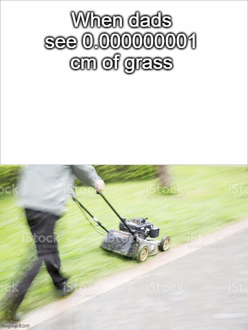 dad be wilin' |  When dads see 0.000000001 cm of grass | image tagged in grass,meme,funny,mowing,dad,relatable | made w/ Imgflip meme maker