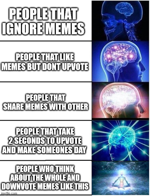 Cleaning is important too |  PEOPLE THAT IGNORE MEMES; PEOPLE THAT LIKE MEMES BUT DONT UPVOTE; PEOPLE THAT SHARE MEMES WITH OTHER; PEOPLE THAT TAKE 2 SECONDS TO UPVOTE AND MAKE SOMEONES DAY; PEOPLE WHO THINK ABOUT THE WHOLE AND DOWNVOTE MEMES LIKE THIS | image tagged in expanding brain 5 panel,memes,upvote begging,memes about memes,mr clean | made w/ Imgflip meme maker
