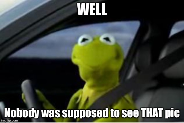 Kermit the frog | WELL Nobody was supposed to see THAT pic | image tagged in kermit the frog | made w/ Imgflip meme maker