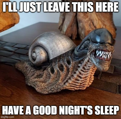 Gastropoda Oneirophobia |  I'LL JUST LEAVE THIS HERE; HAVE A GOOD NIGHT'S SLEEP | image tagged in fun,sleep,snail,predator | made w/ Imgflip meme maker