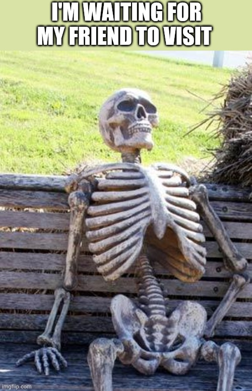 Waiting Skeleton |  I'M WAITING FOR MY FRIEND TO VISIT | image tagged in memes,waiting skeleton | made w/ Imgflip meme maker