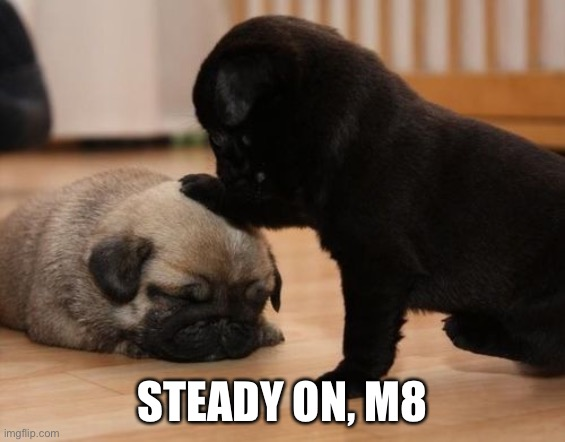 there there | STEADY ON, M8 | image tagged in there there | made w/ Imgflip meme maker