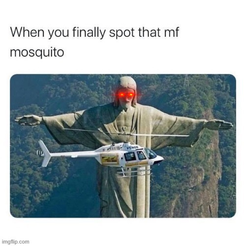 Yes | image tagged in mosquito,helicopter,god | made w/ Imgflip meme maker