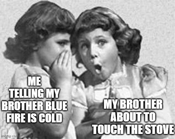If you've done something like this, give it a like |  MY BROTHER ABOUT TO TOUCH THE STOVE; ME TELLING MY BROTHER BLUE FIRE IS COLD | image tagged in funny,humor,dark humor,siblings | made w/ Imgflip meme maker