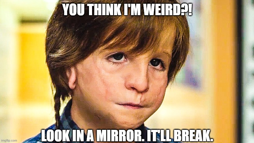 Choose kind |  YOU THINK I'M WEIRD?! LOOK IN A MIRROR. IT'LL BREAK. | image tagged in captain obvious | made w/ Imgflip meme maker